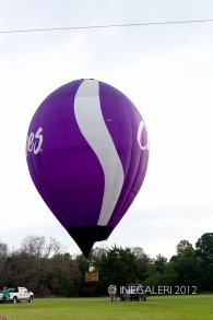 Balloon Fest | 20 May 2012-28