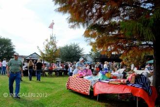 Edgewood Heritage Fest in the Park | 2009-15