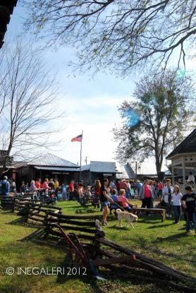 Edgewood Heritage Fest in the Park | 2009-26