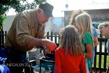 Edgewood Heritage Fest in the Park | 2009-29