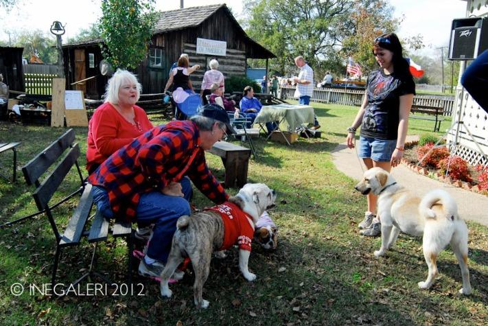 Edgewood Heritage Fest in the Park | 2009-40