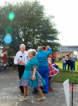 Edgewood Heritage Fest in the Park | 2009-8