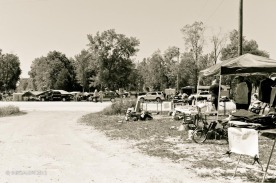 Highway 80 Sale - Considered Busy | April 2012