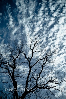 Leap Year Day Sky | February 2012-10