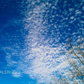 Leap Year Day Sky | February 2012-18