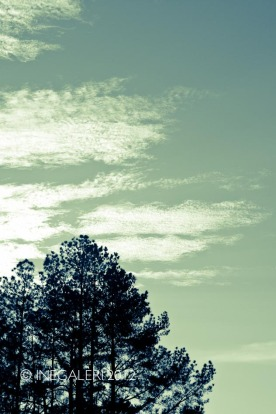Leap Year Day Sky | February 2012-4