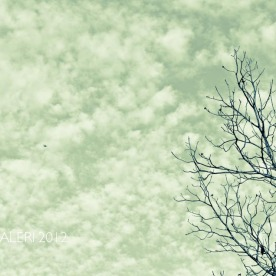Leap Year Day Sky | February 2012-5