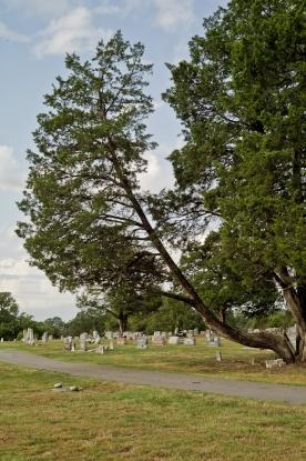 DSHP-IB-10-Creagleville Cemetery