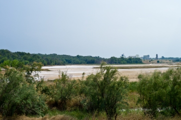 DSHP-IB-18-Salt Flat Marsh
