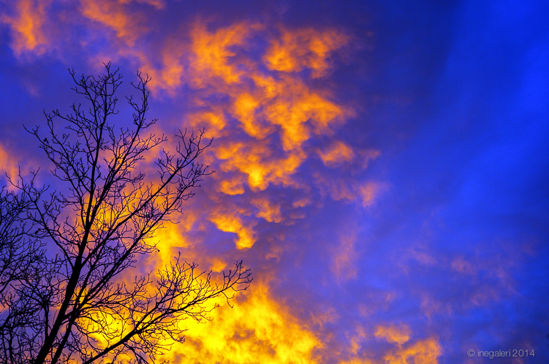 SKY-Sunrise December 2013-1