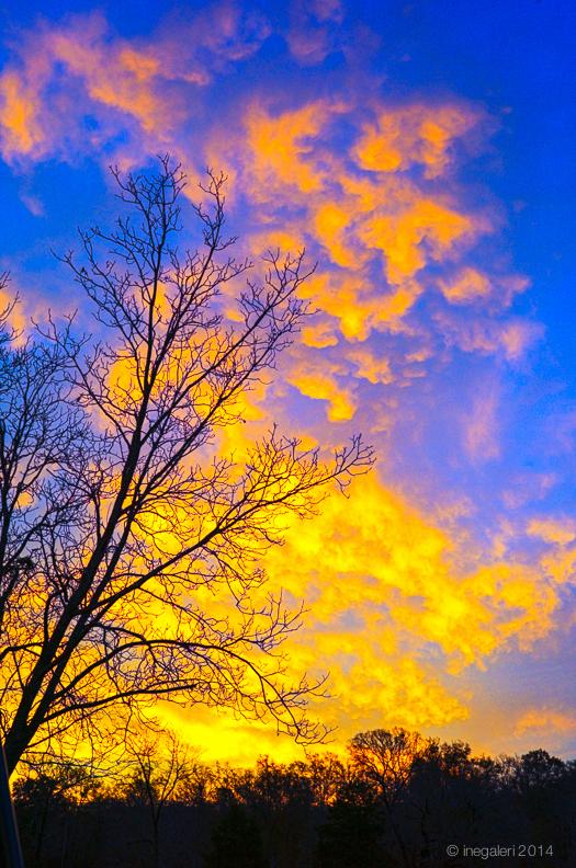 SKY-Sunrise December 2013-2