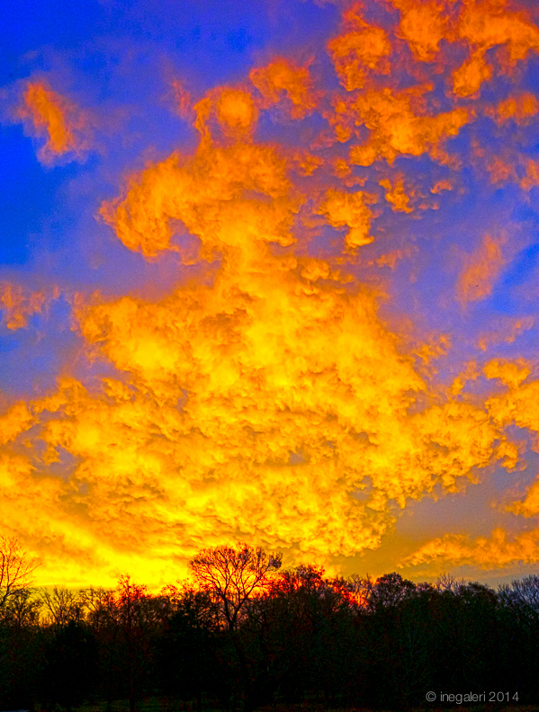 SKY-Sunrise December 2013-3
