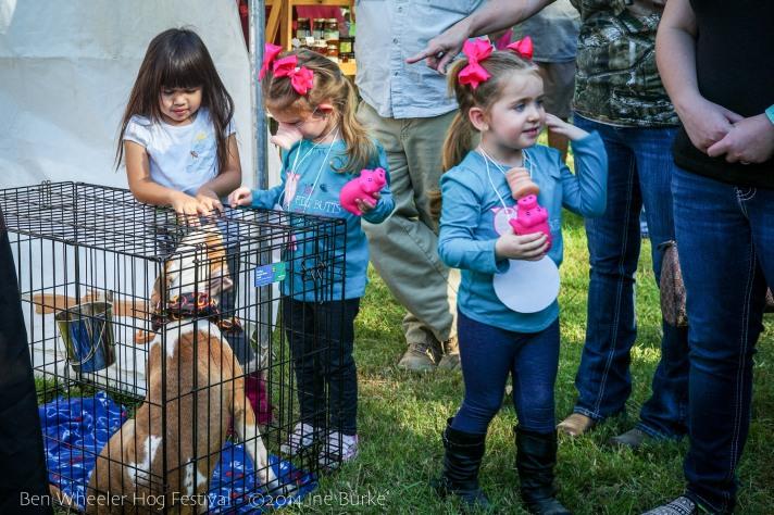Hog Fest 2014-40