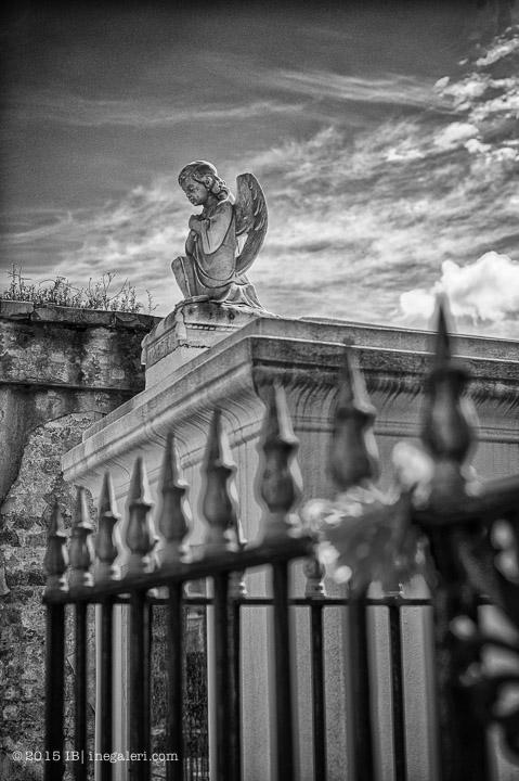 Ine Burke | St Louis Cemetery-5