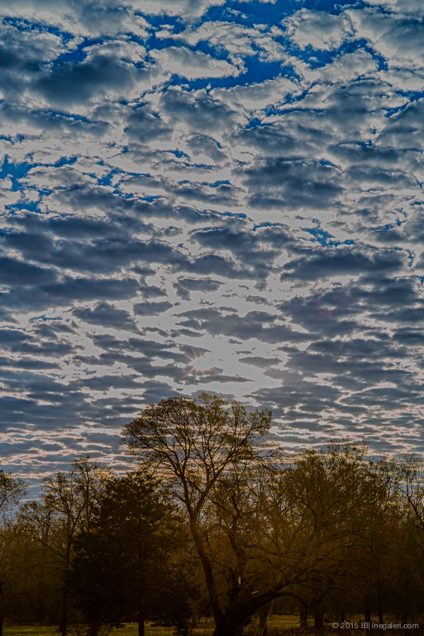 Altocumulus in Morning | Feb 2015-1