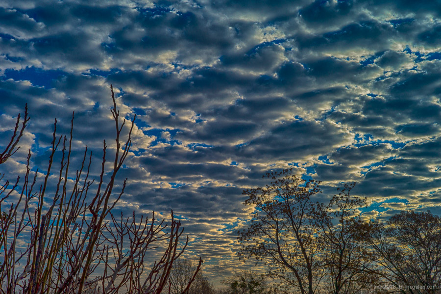Altocumulus in Morning | Feb 2015-5
