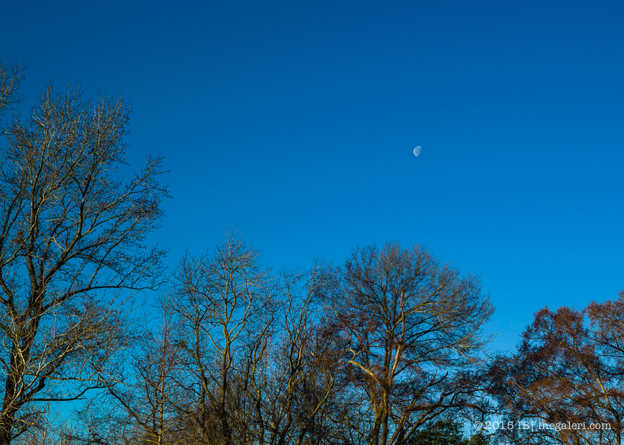 Moon in morning | Feb 2015-2