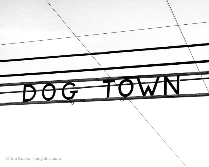 Dog Town IBurke S