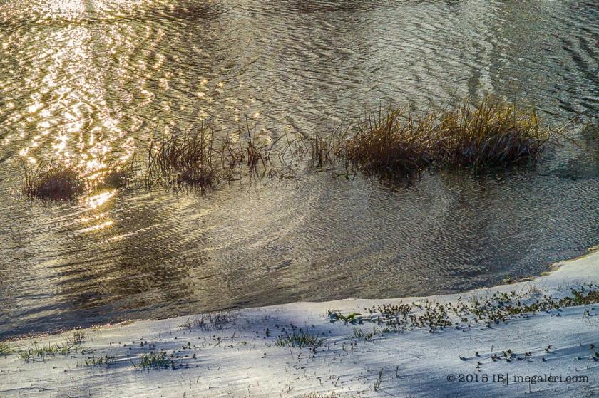 Snow M9 Mar2015 | IB-2