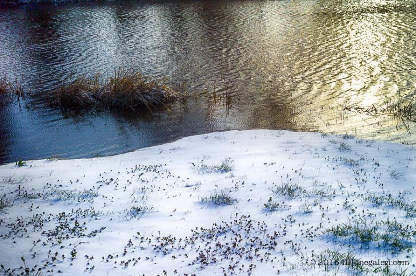 Snow M9 Mar2015 | IB-4