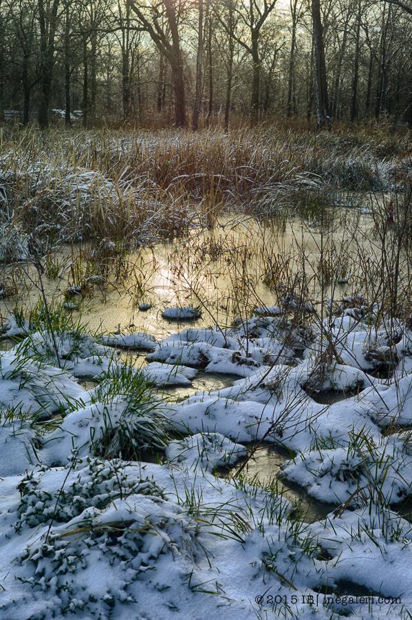 Snow M9 Mar2015 | IB-5