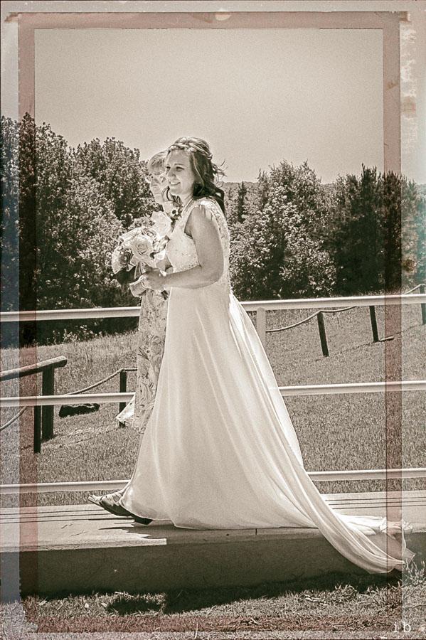 Allen Wedding 2015 |iburke-3