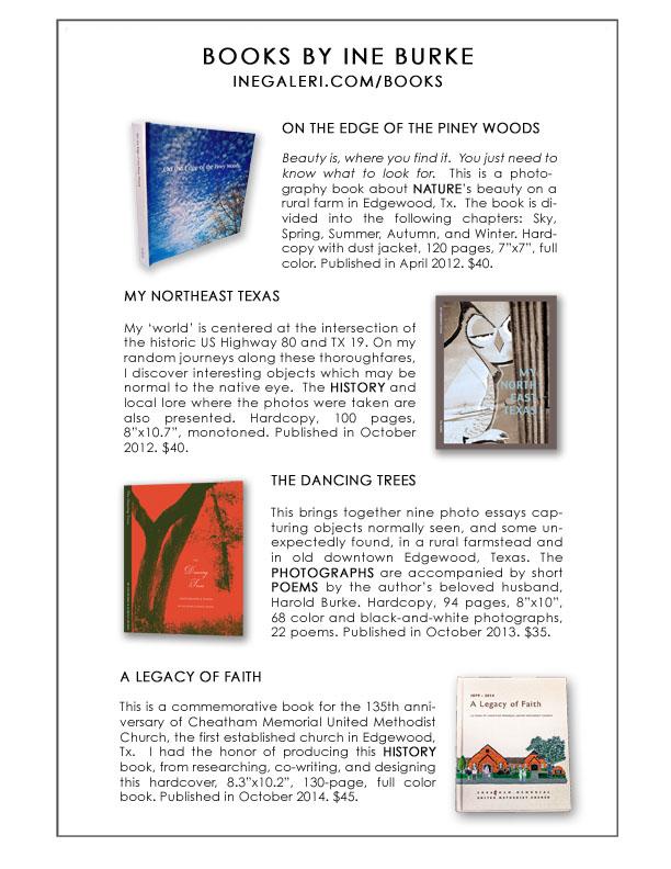 Books Promo Leaflet S