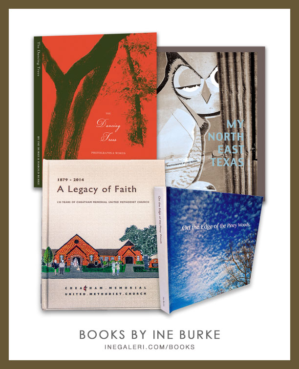 Ine Burke Books Collage