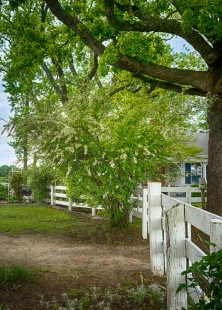 The owner's fondness of white is reflected throughout the garden.