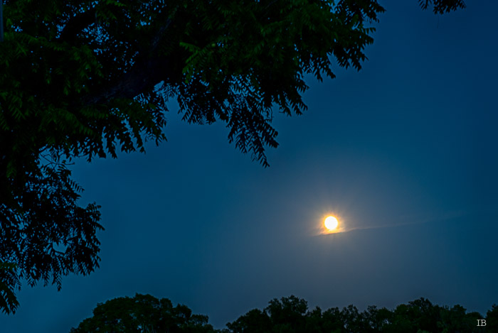 Moon Rising on July 1st, 2015 - 9.14 PM