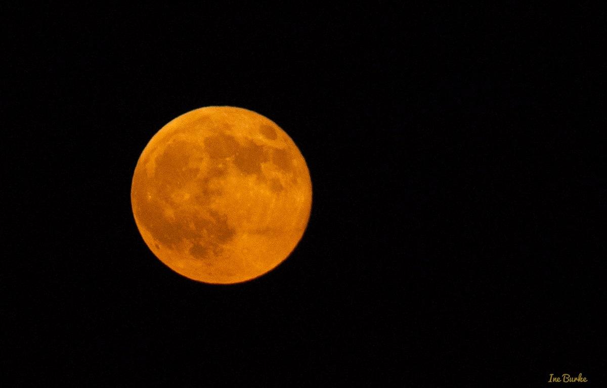 Sturgeon Moon Inegaleri