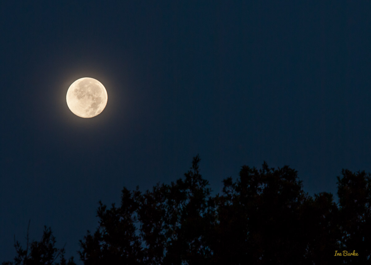 Blue Moon July 2015 - IB-1