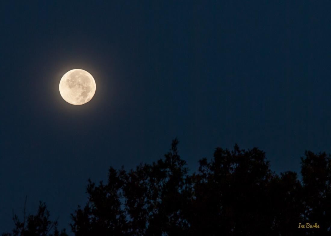 Blue Moon July 2015 - IB-1