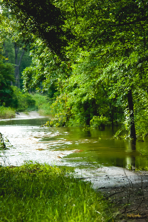 End May 2015 Flood-0059