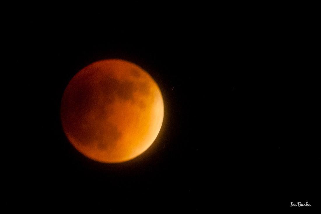 20150927-152_0046- Lunar Eclipse