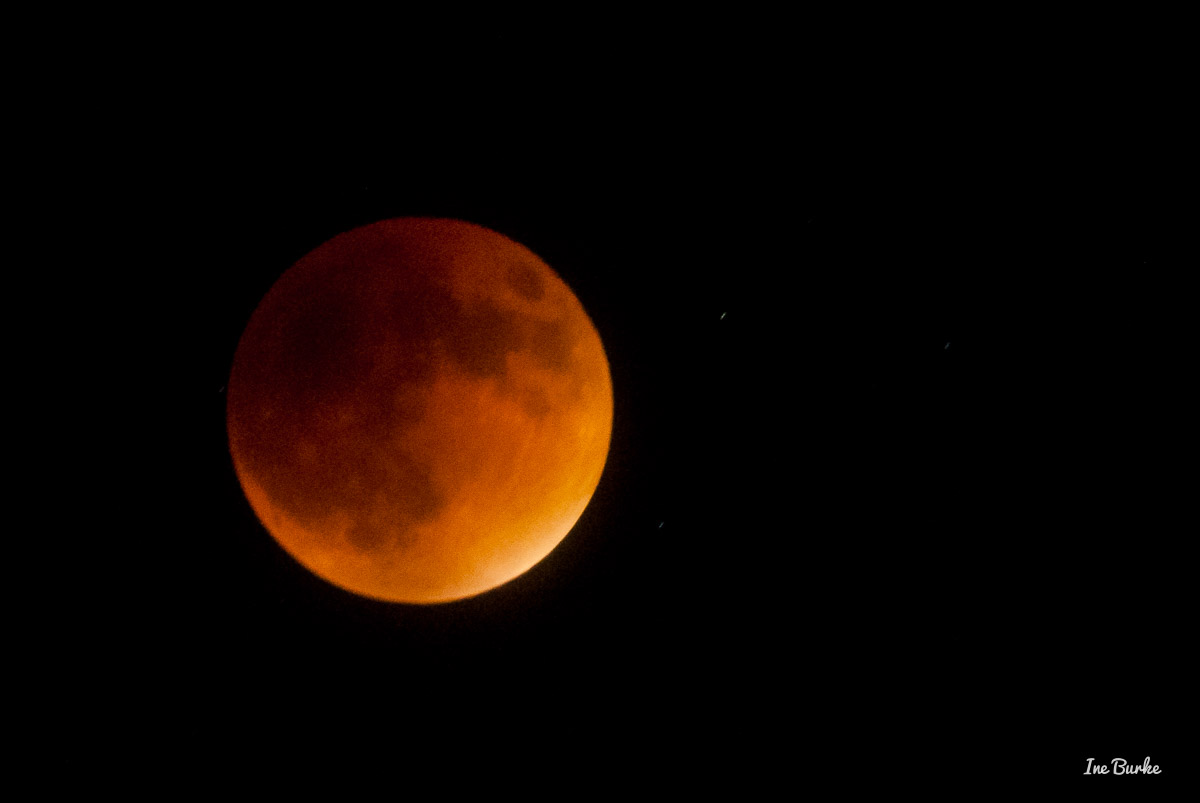 20150927-152_0057- Lunar Eclipse