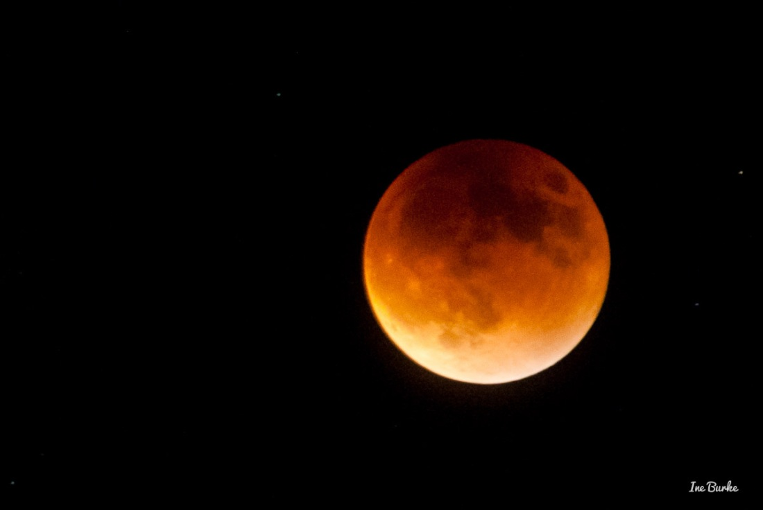 20150927-152_0067- Lunar Eclipse