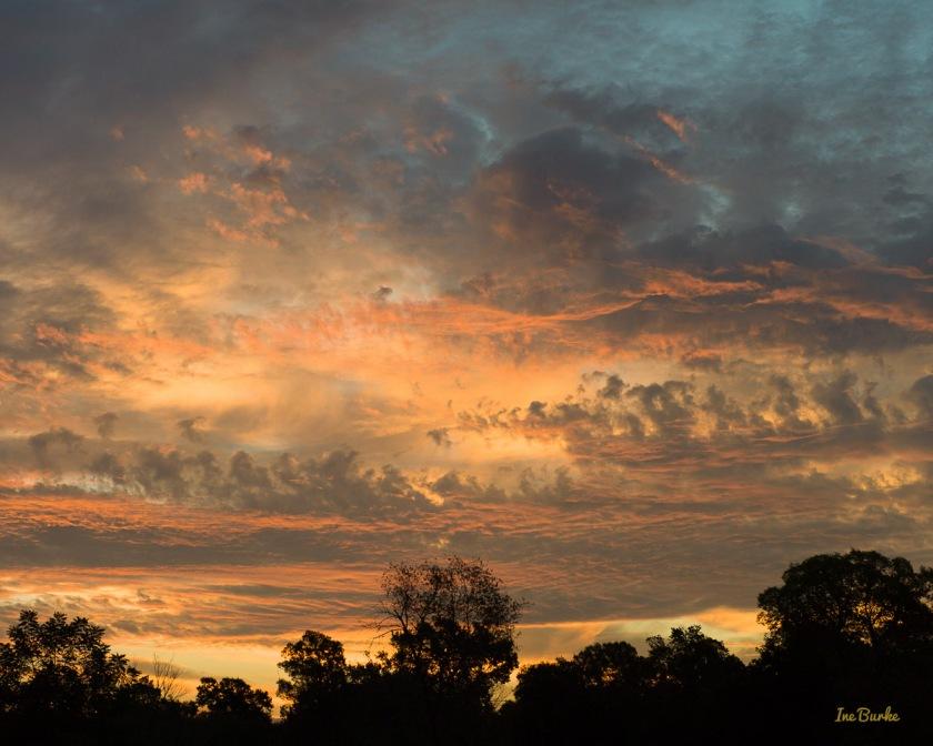 Majestic Texas Sky | Frame 16x20 | Giclee Print 11x14