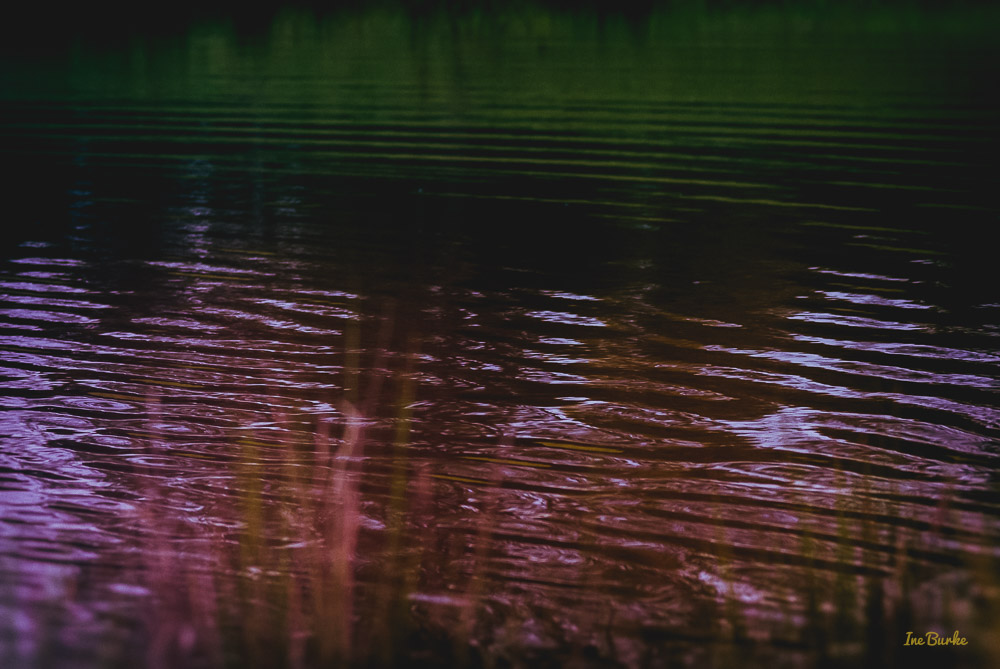 By the Pond-151026-153_0018-Edit