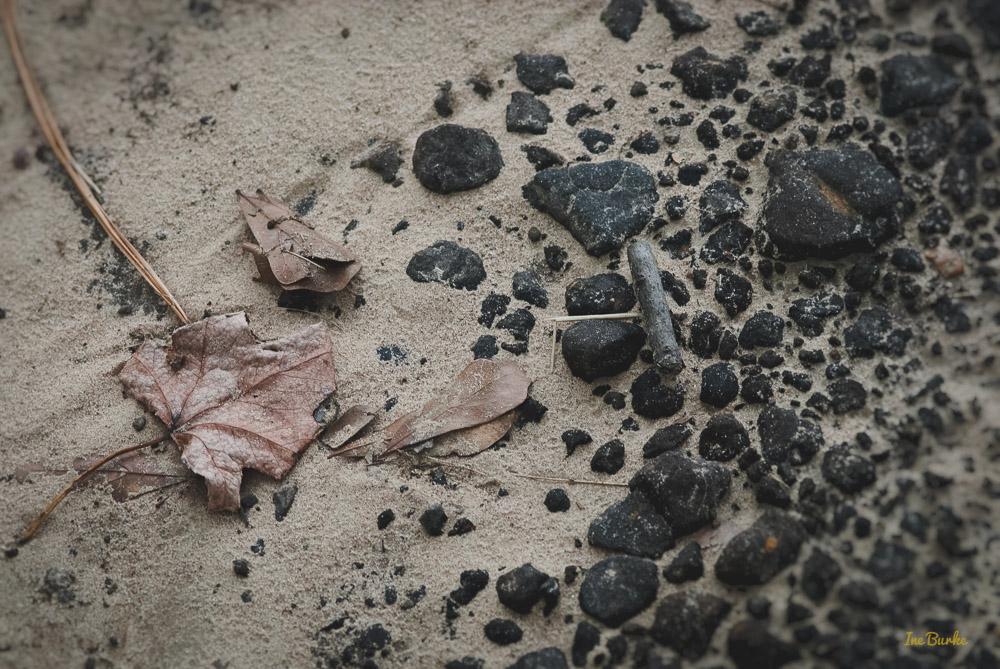 Sandy Soil-151026-153_0003-Edit