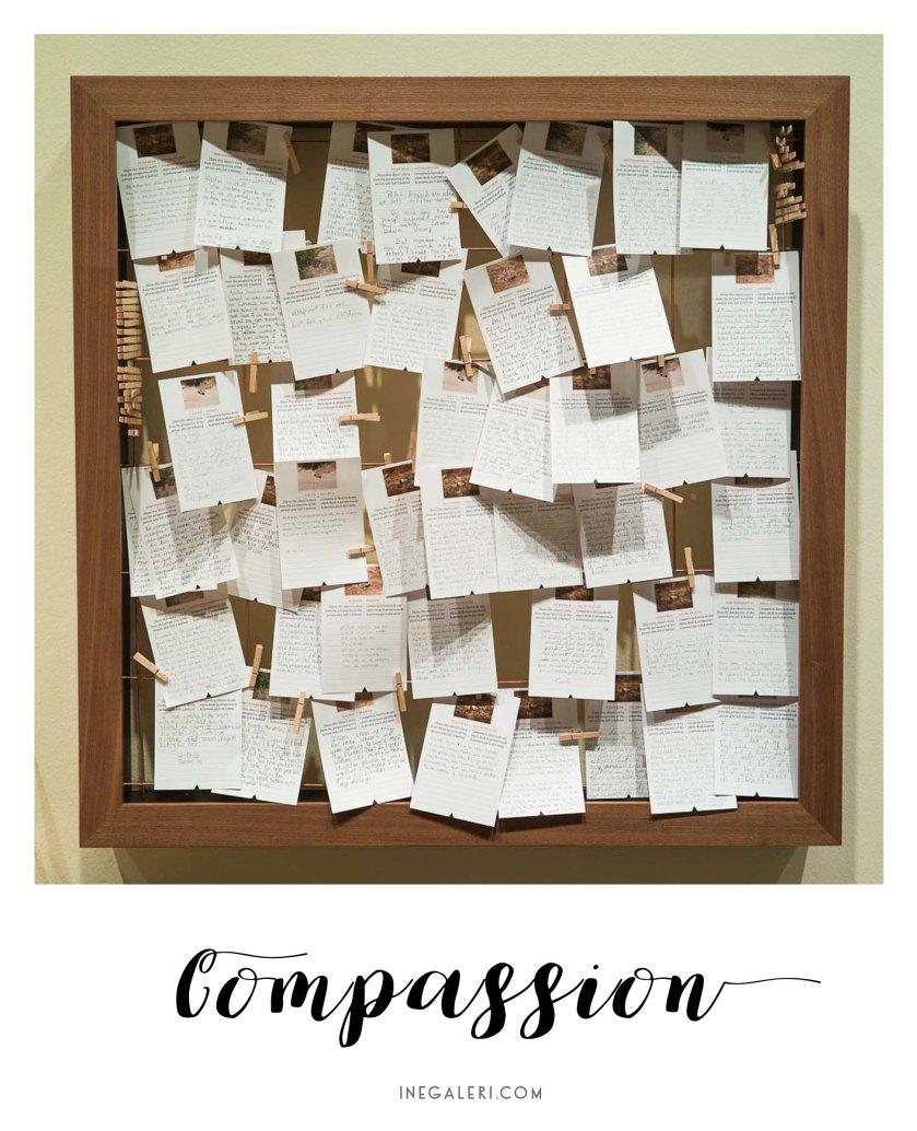 border-cantos-compassion